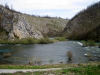 tounjcica050416